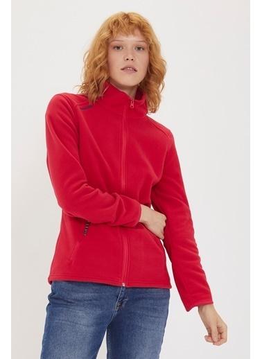 Lee Cooper Sweatshirt Fuşya